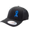 Child Abuse Awareness Hat Curve Bill w/ Awareness Ribbon and Protect The Children Inc Front